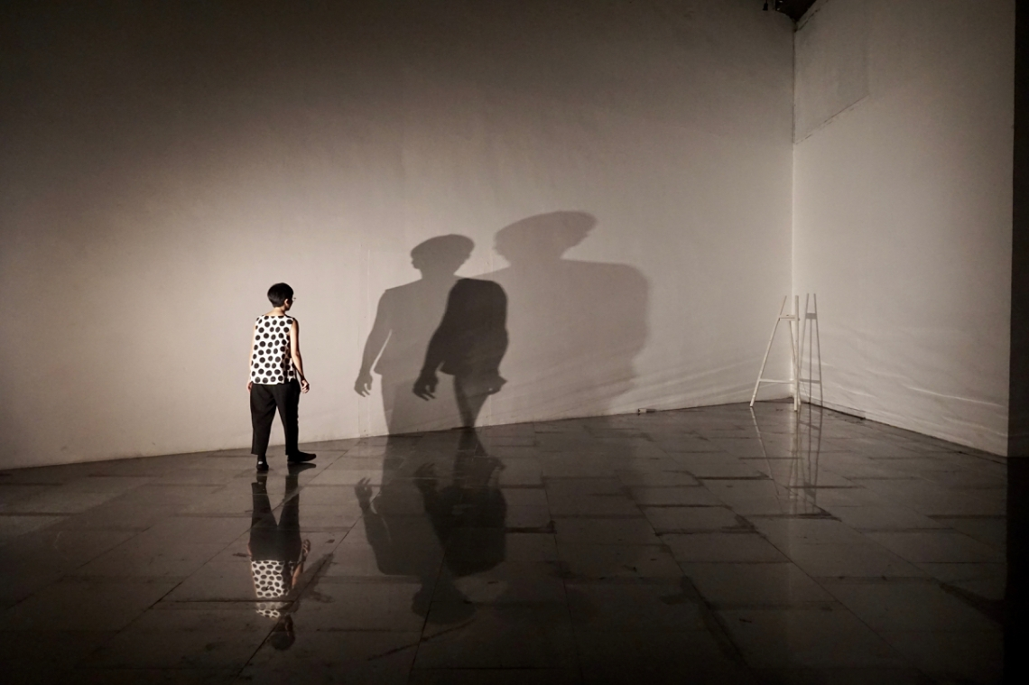 Shadow play 1
